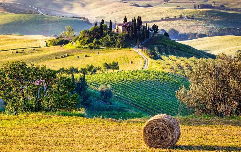 گردشگری کشاورزی یا آگری توریسم